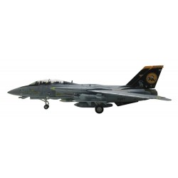 F-14D Tomcat VF-31 Tomcatters, USS Theodore Roosevelt US Navy 2006 HA5232