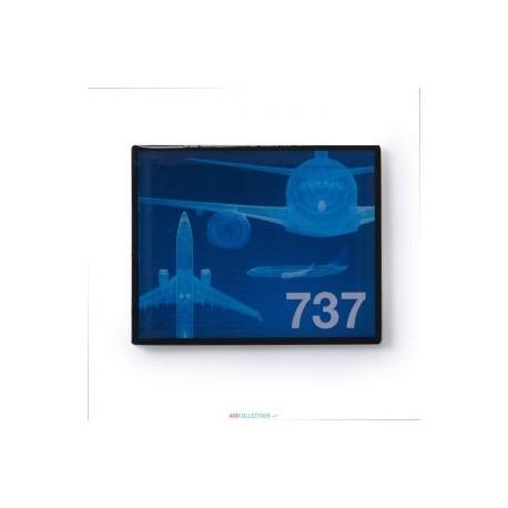 Pins Boeing F11 737