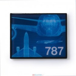 Pins Boeing F11 787