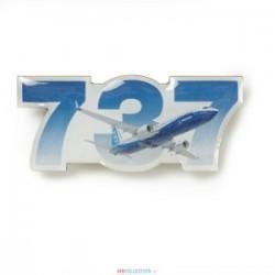 Pins Boeing 737 Sky